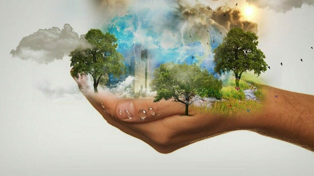 3 Barriers to Implementing Sustainable Practices (and How to Overcome Them)