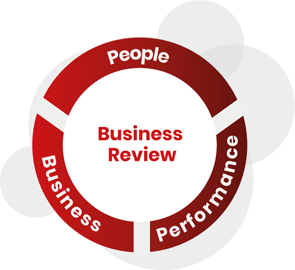Business Review Model