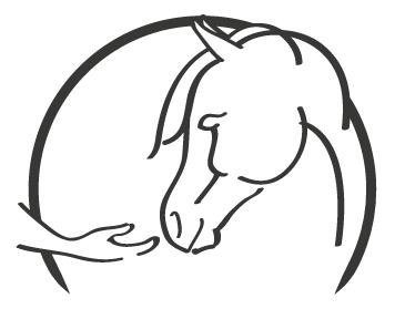 SB Horsemanship