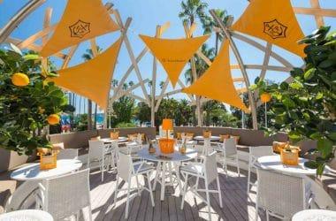 Access Cannes - Bar Rotonde Veuve Clicquot