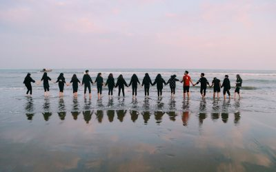 Team-Building – How To Use It To Maximise The Sustainability Efforts