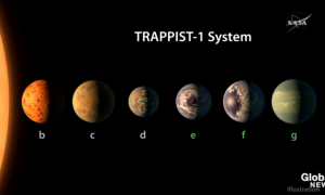 Trappist-1-systemet. Illustration: NASA