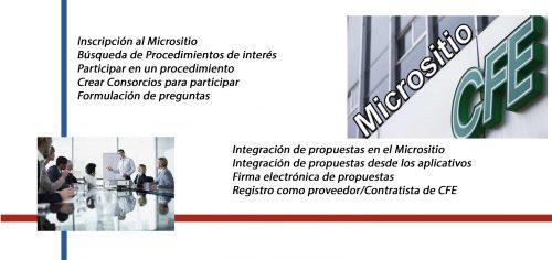 Curso de Micrositio CFE, AlCon Consultoría y Cómpupto, AlCon Consulting And Commerce