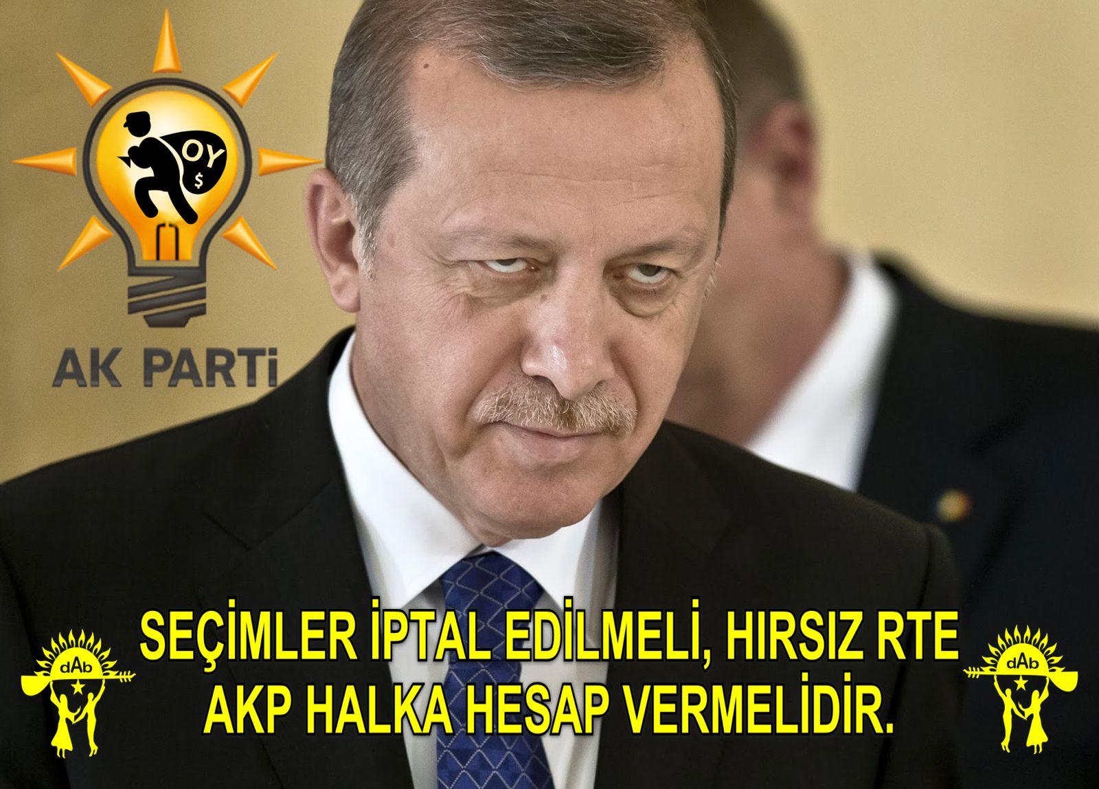 hirsiz erdogan1_1