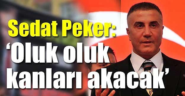 Sedat-Peker-Oluk-oluk-kanları-akacak