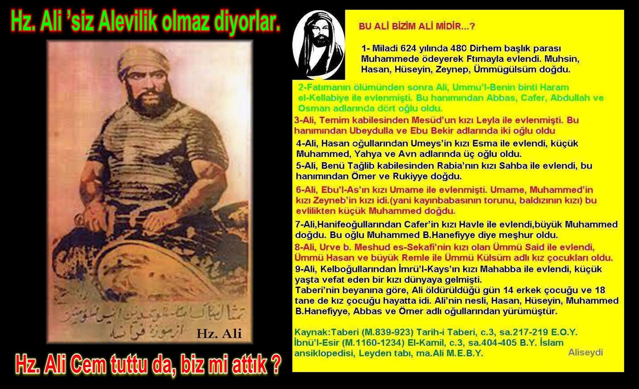 12 Hz imam Ali divani Alevi bektasi kizilbas pir sultan cemevi cem semah devrimci aleviler birligi DAB Feramuz Sah Acar cem