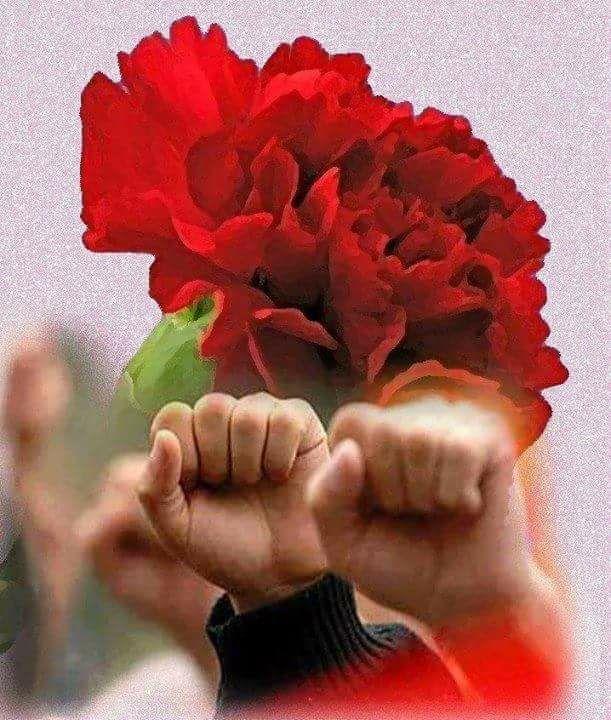 Faşizme karşı demokratik güç birliği dayanışma