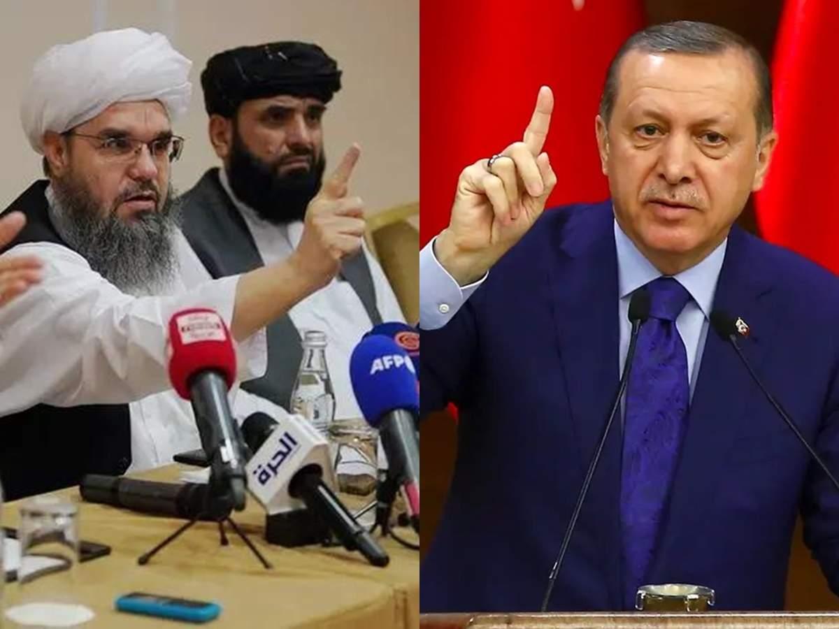 Taliban erdogan ılımlı islam