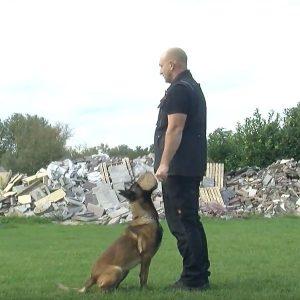 Chris-Polhout-over-hondensport