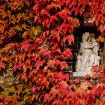 A madonna on a corner in late fall/autumn in Brugge, Belgium.