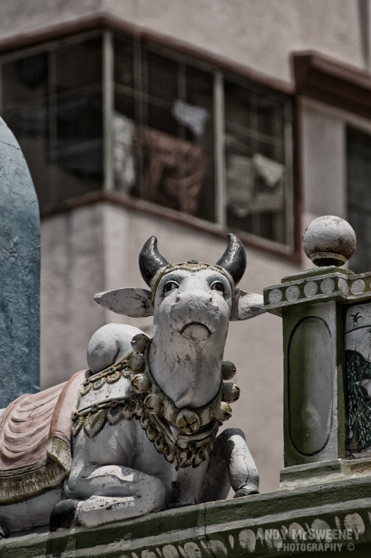 Sculpture of Camadhena, the Indian Hindu Cow God in South-India