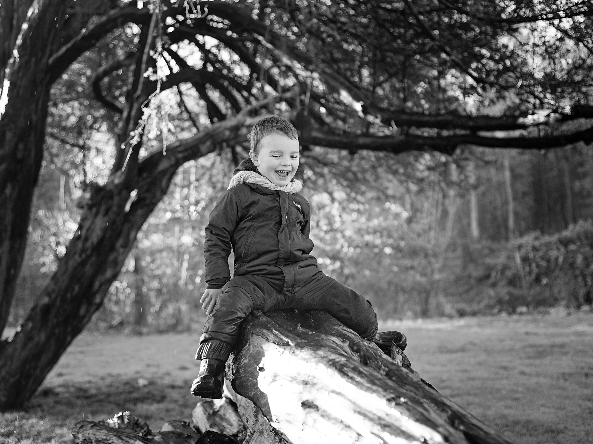 dalkeith country park four year old family photography in edinburgh midlothian