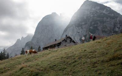 Østrig – I love U