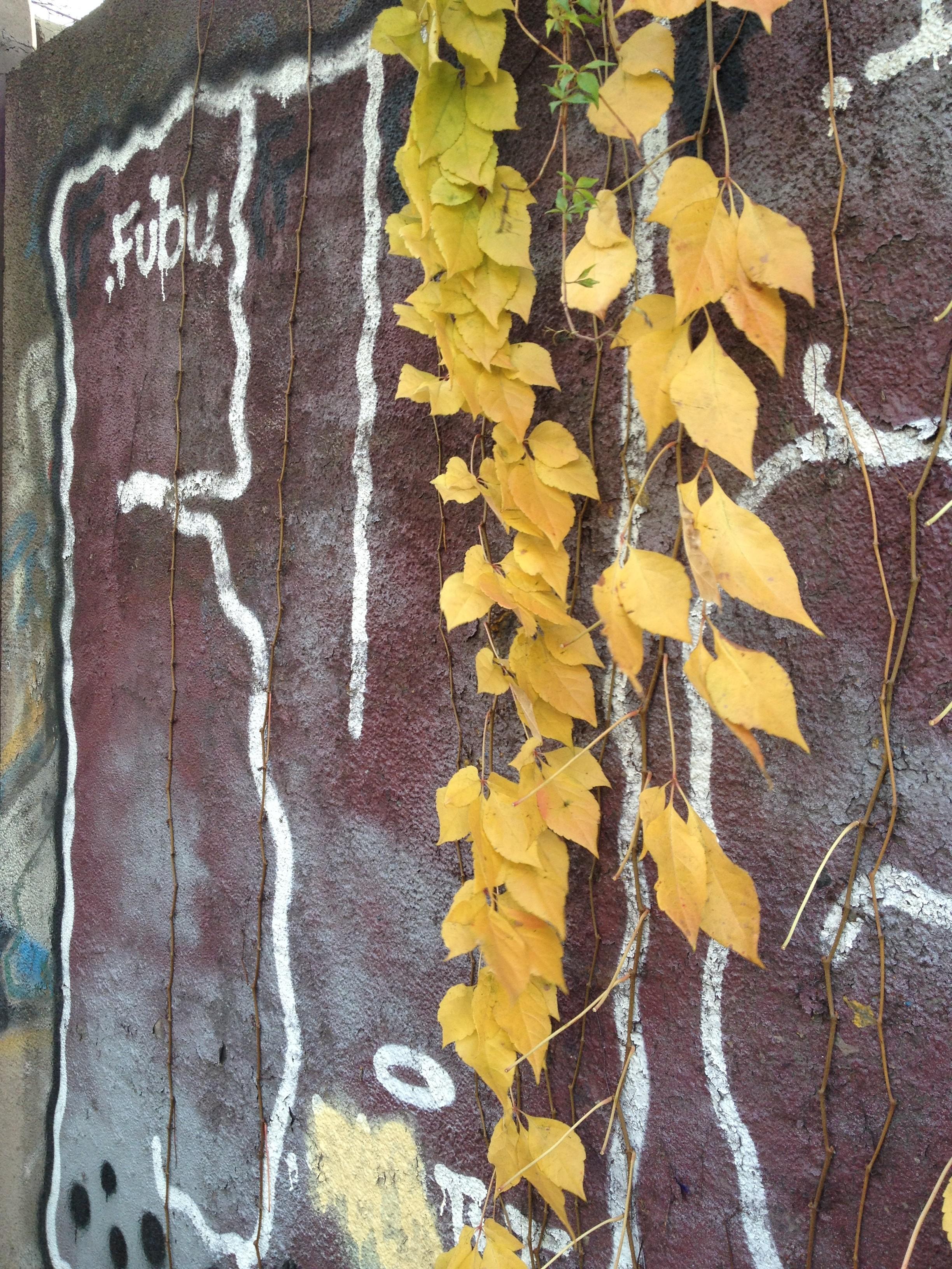 oslo, travel, trip, vigeland, statues, graffiti, autumn, november