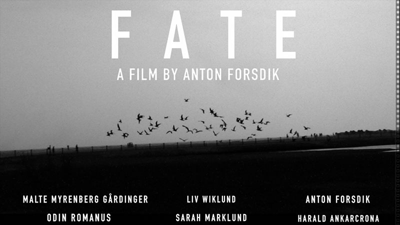FATE film (2017) Official Teaser Trailer
