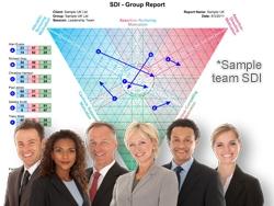 SDI preventing conflict in teams