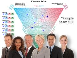 SDI forstå konfliftmønstre i teams