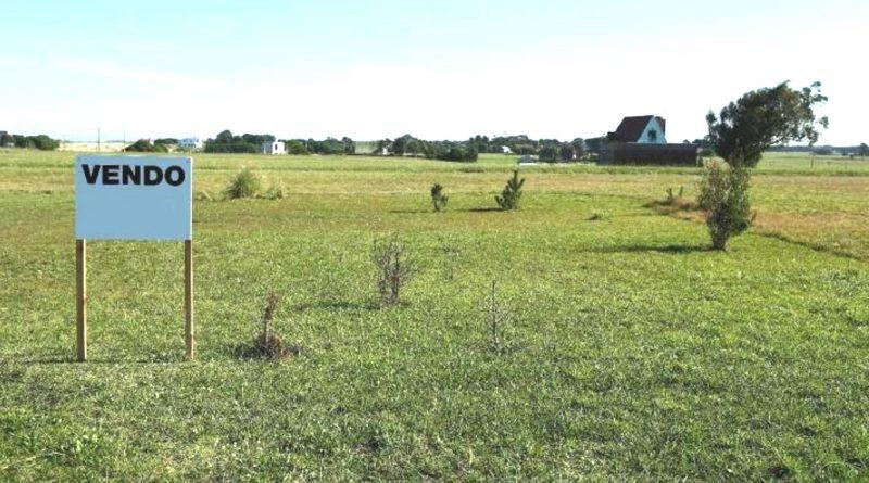 in dieci anni abbandonati 300.000 ettari
