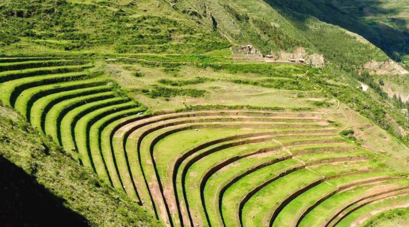 Aztechi ed agricoltura