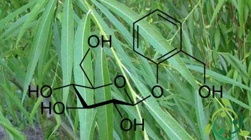 Salicina