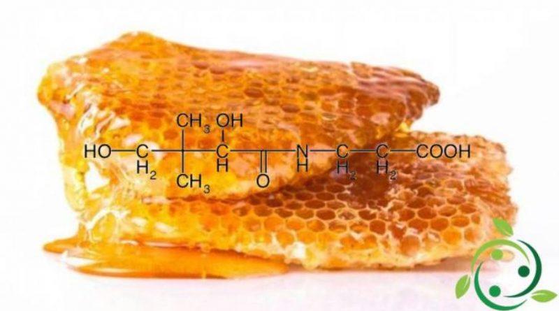 Acido pantotenico