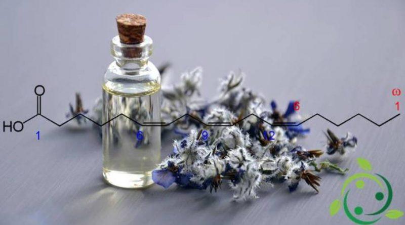 Acido γ-linolenico