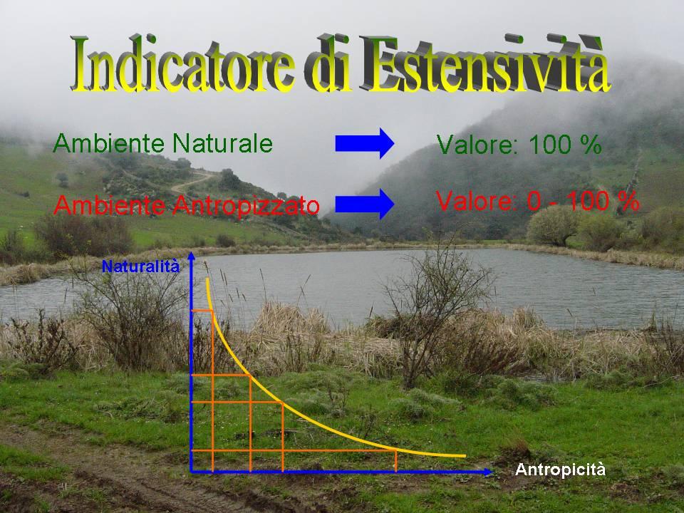 Indicatori di Estensività