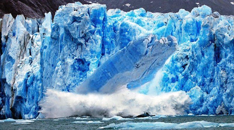 Il Frumento che sta distruggendo i ghiacciai