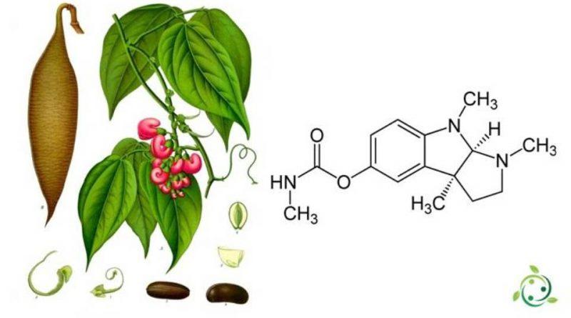 Fisostigmina
