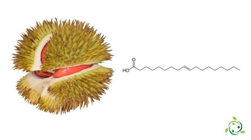 Acido Elaidinico