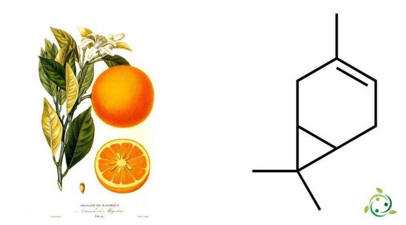 Δ-3-carene