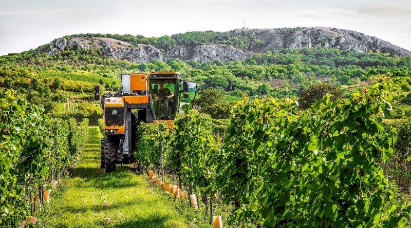 Verso le aziende agricole a zero emissioni