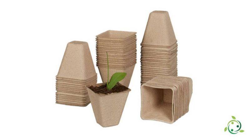 Vasetti di torba per semina