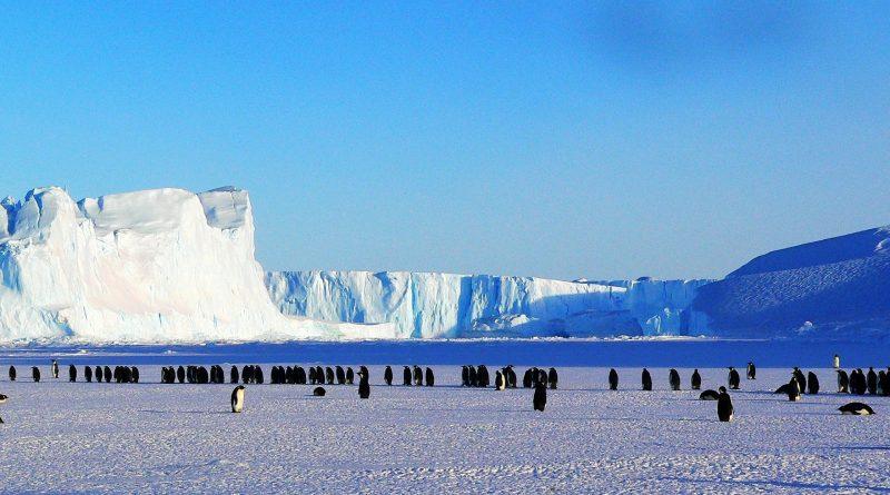 Clima glaciale