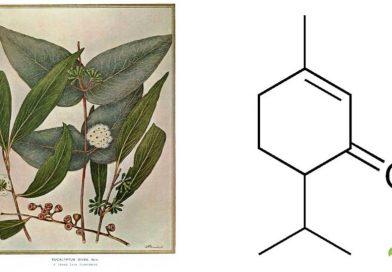 Piperitone