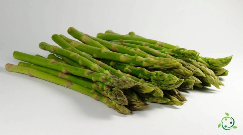 Valore nutrizionale degli Asparagi
