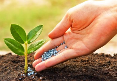 Fertilizzanti Inorganici
