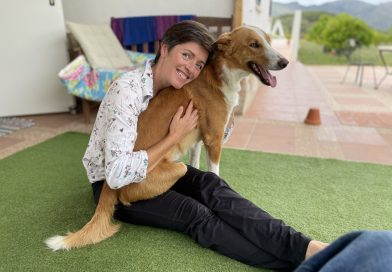 ¿Qué es la leishmaniasis canina (Leish)? ¿Qué debo considerar si quiero adoptar un perro con Leish?