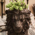 lejonhuvud kruka