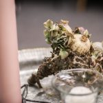 bordsdekoration torkade blommor
