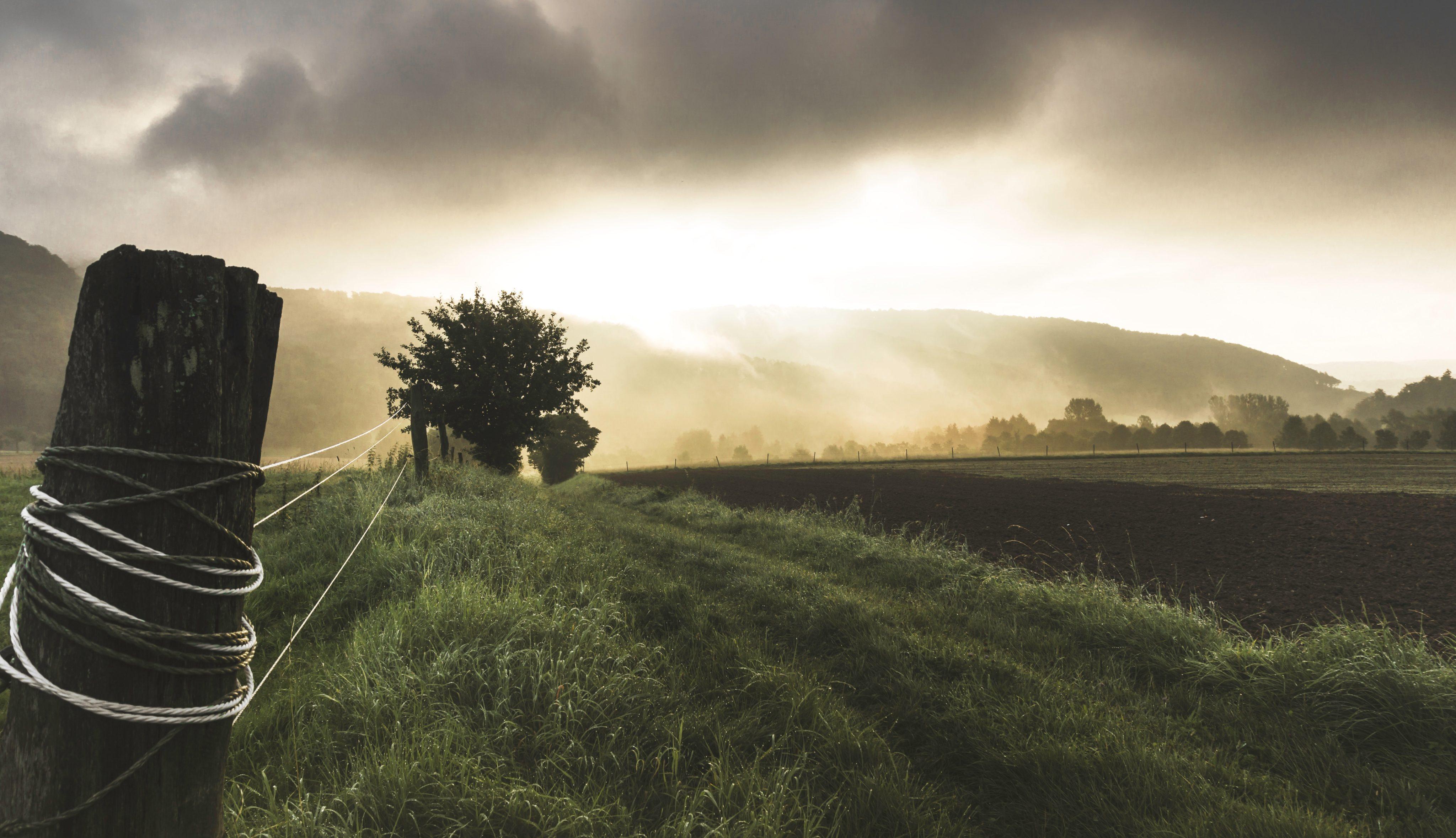 fence, rural, field