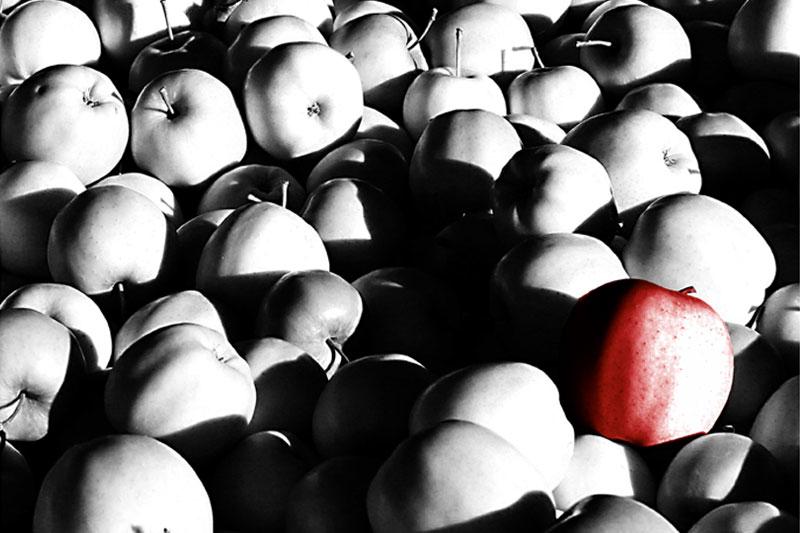 Äppellåda, Tasmanien