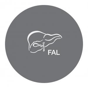 FAL logo