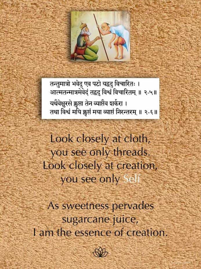 Ashtabakra Gita (Joy of Self-Realization) Verse: 2.5, 2.6
