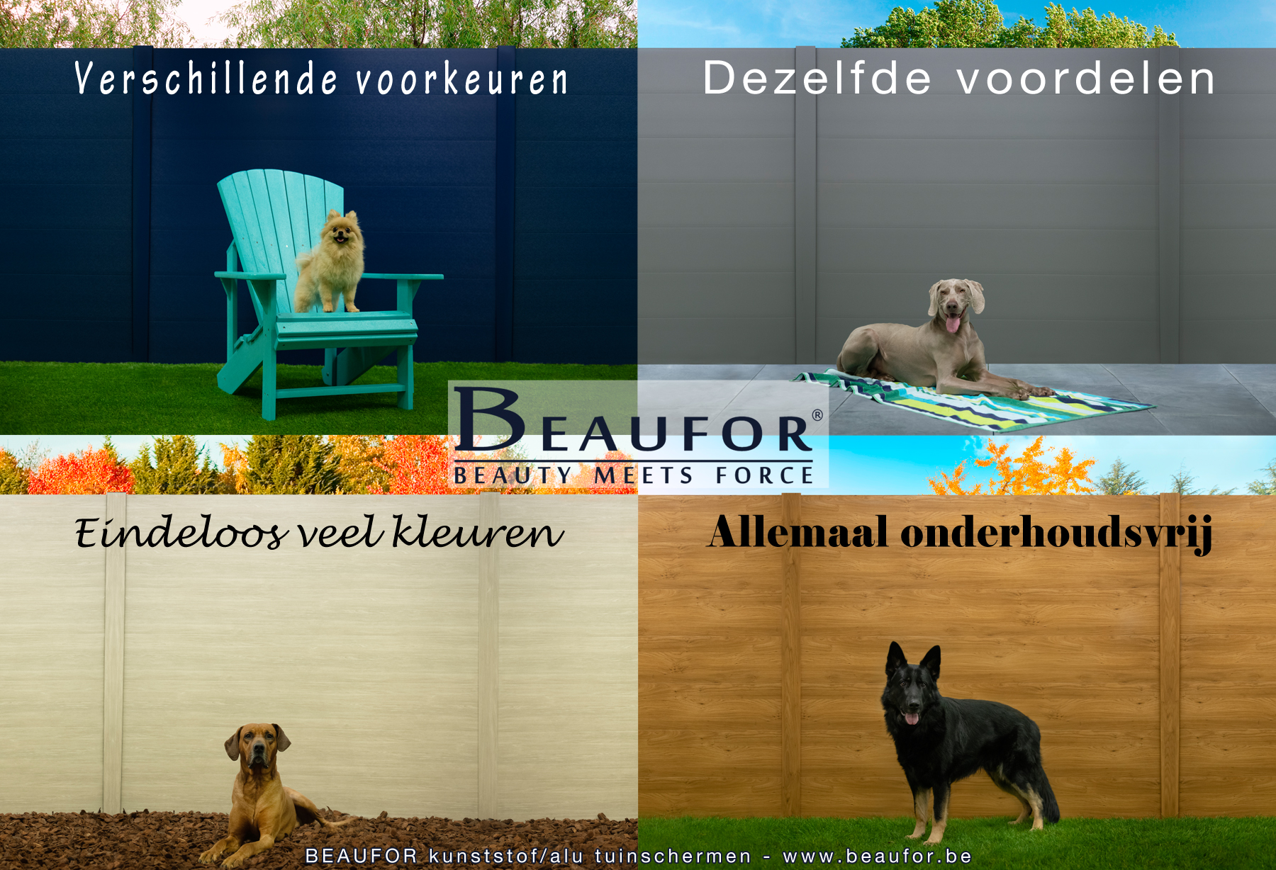 BEAUFOR meets dogs