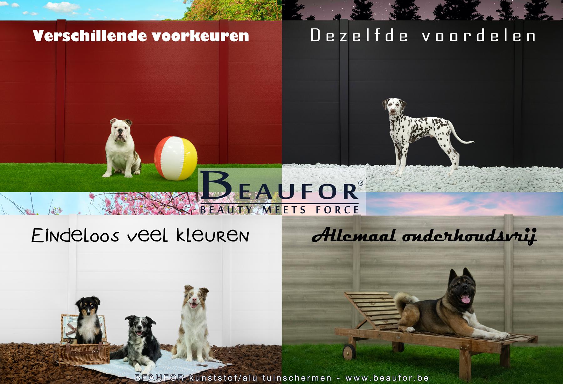 BEAUFOR Dog Challenge