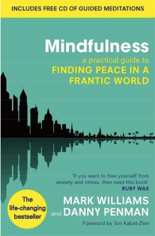 We think Finding Peace in a Frantic World is a great mindfulness course. This is a best seller so there's a lot of people who think the same!