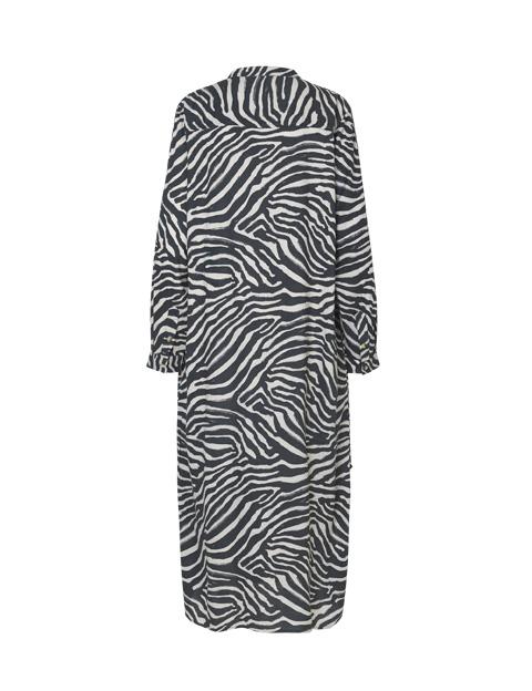 Pureheart  – Zebra