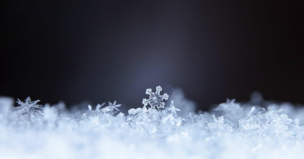 Sneeuwvlokjes