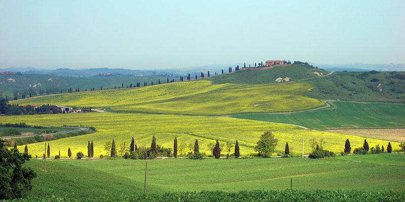 Udsigt Over Toscana